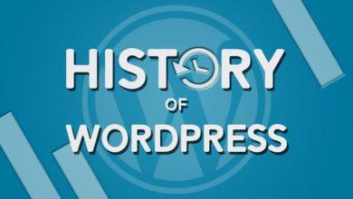 Photo of History of WordPress